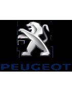 Lunetas PEUGEOT 306 Cabriolet Fase 1 (1994 - 03.1997) - Fase 2 (04.1997 - 2003)